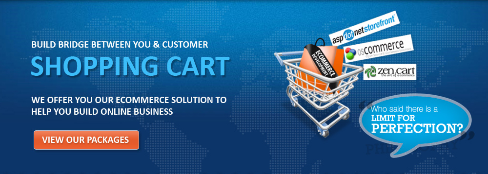 Ecommerce Shopping Cart Website